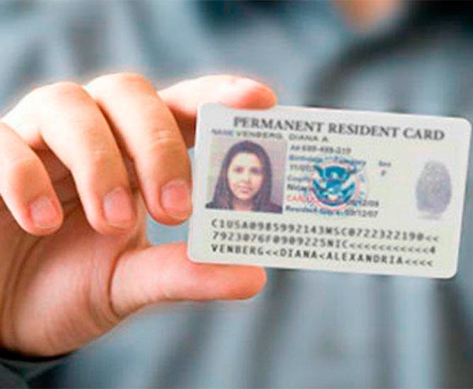 naturalization online application